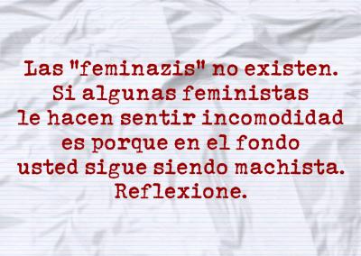 feminazis no existen