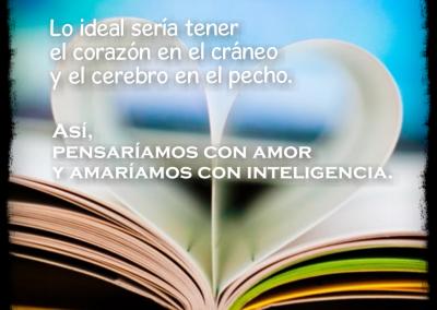 amar con inteligencia