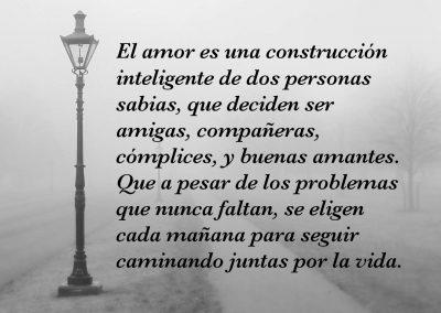 amor construcción inteligente