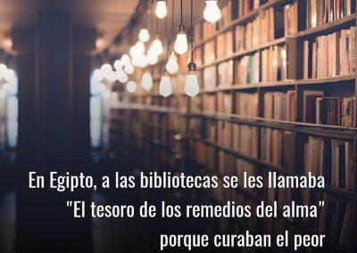 bibliotecas curan la ignorancia