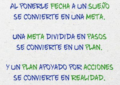 meta plan acciones